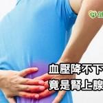 血壓長期降不下來 竟是腎上腺長瘤惹禍