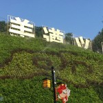貴州風情(四)-遵義海龍屯土司遺址