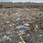 廢棄物每年導致100百萬人死亡