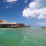海中酒吧尋找酒保