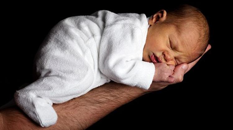 baby-20339__340