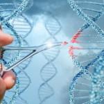 基因飲食療法