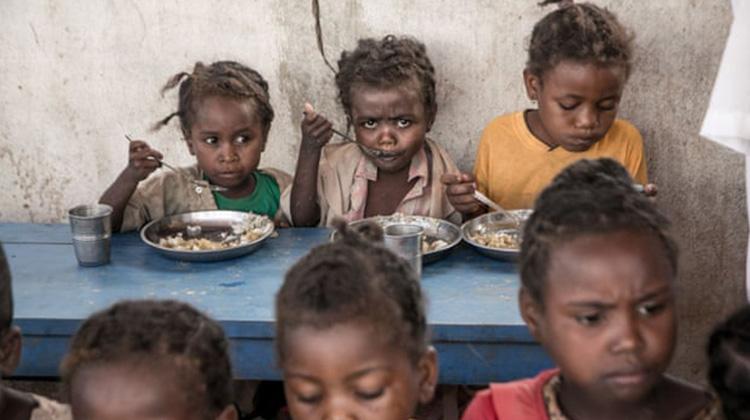 非洲兒童近一半死於飢餓