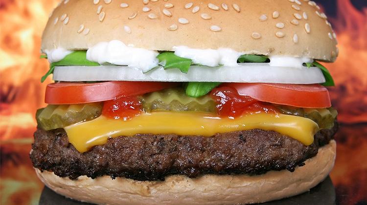 拯救地球,少吃漢堡