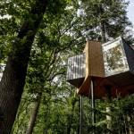 入住一晚萬元房價,實現童年夢想樹屋飯店