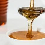 尚比亞靠蜂蜜獲得甜蜜大成功