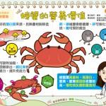 螃蟹的營養價值