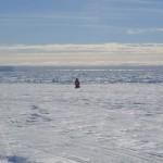 孤獨的南極探險者,大腦正在萎縮?
