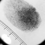 為什麼我們會有指紋?