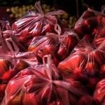 突尼西亞明年將全面禁用一次性塑膠袋