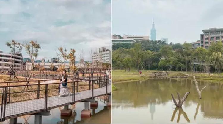【下班與休日的散步新景點】南港新新公園、永春陂生態濕地公園,一起慢遊台北兩處都市新綠地