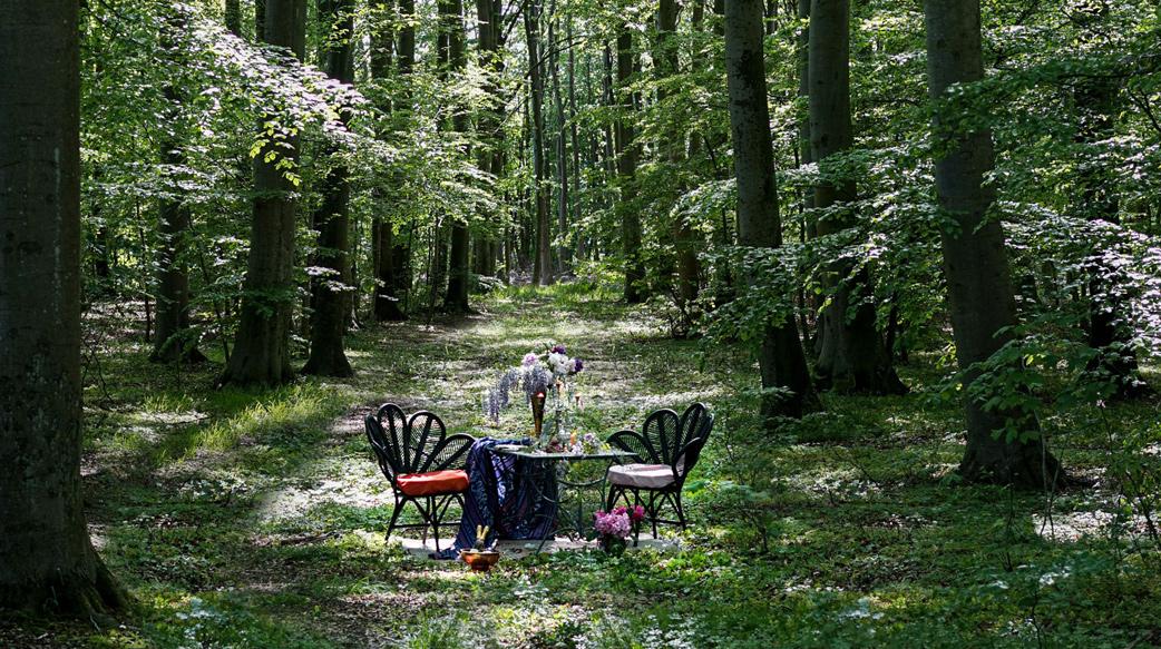 你會想要在森林裡還是海邊用餐?