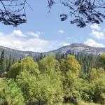 加州最古老的山中旅館:優勝美地Wawona Hotel和草原步道