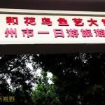 淘寶好去處——廣州花鳥市場