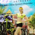 台灣腳踏車 年銷歐洲2百萬台