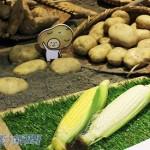 台灣農產品做品牌  才能成功行銷國際