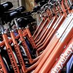 「單車王國」荷蘭研究:每週騎單車75分鐘,平均壽命多6個月