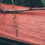 皮革與樹木的自然韻律,會呼吸的皮夾《PARSEC 樹革》