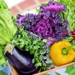 國衛院:外食太油不健康 學者建議增清淡選擇