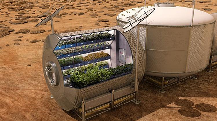 史上首次 太空員食用種植在外太空的糧食