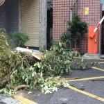 颱風假不給薪合理嗎?