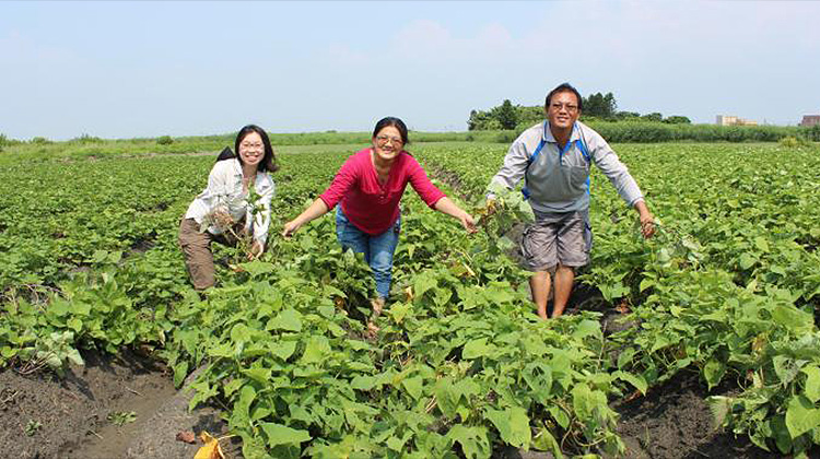 年輕人,要解決農業問題,不是只有「幫小農賣東西」這條路而已