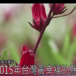 2015年台灣最幸福的縣市是?