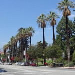 洛杉磯帕薩迪納--老城區的美食之旅
