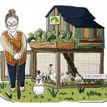 食二糧友雞生活計畫  幫樂齡族蓋座小雞舍