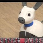 另類寵物選擇 超萌機器狗MIRO