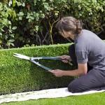 教養路上做個更好的園丁
