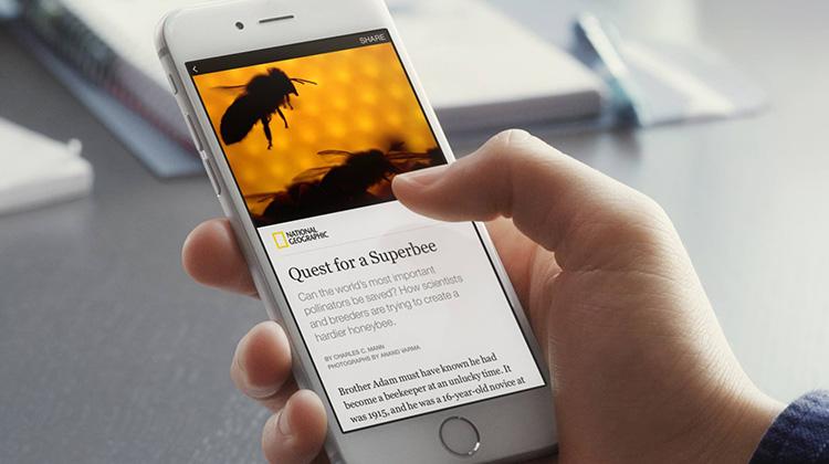 臉書開放權限 出版者可直接發表內容