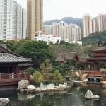 南蓮園池——藏在香港鬧市的世外桃源