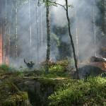 《劉三專欄》如何面對末日災難警訊 ─從加拿大森林大火說起
