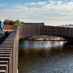 當荷蘭小鎮發現有「蝙蝠」來訪 他們為這群稀客量身打造一座生態橋