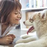 你會讓狗舔你臉嗎?