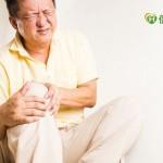 退化性關節炎好痛 醫:不運動更惡化