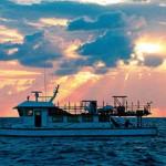 慢魚運動Ⅰ:你吃的海鮮,都從中國來?