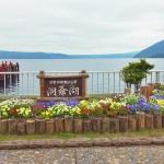 北海道洞爺湖和昭和新山熊牧場