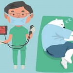 熊健康出任務/大腸鏡怎麼做才有效?