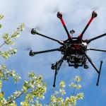 利用無人機保護野生動物