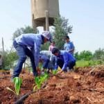 敘利亞小學打造「可以吃」的遊樂場,讓在地菜園成為飢餓孩童的希望