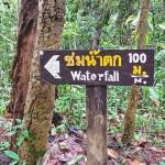 泰國最高點:清邁茵特濃公園