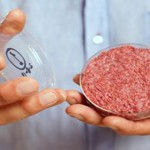 干細胞中可能會培育出肉嗎?