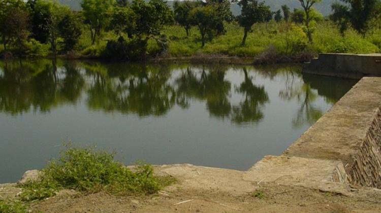 讓大自然幫忙儲水!72 歲工程師奶奶建「節約水壩」,改善印度乾旱困境