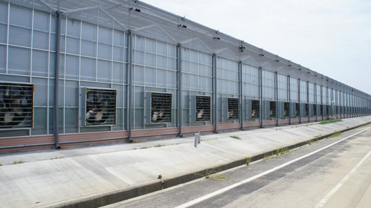 設施農業商機竄升 7/26亞太區農業技術展覽招募參展