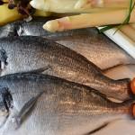 想要懷孕嗎? 多吃魚