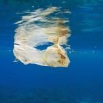 救救海洋!8000公里征程、180天考驗……法國泳將勒康特橫渡太平洋 呼籲世人正視塑膠污染