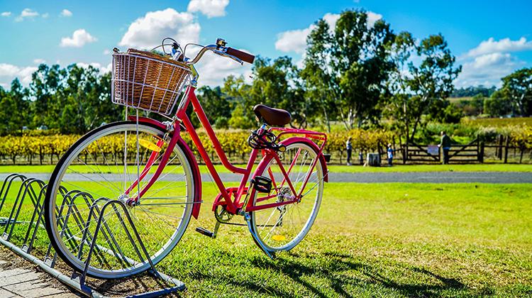 自行車騎士的天堂 : 荷蘭