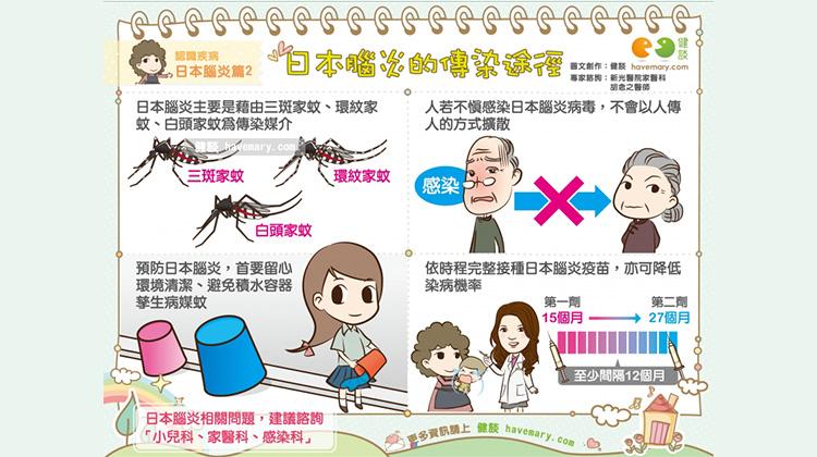 日本腦炎的傳染途徑|認識疾病 日本腦炎篇2